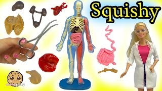 Download Squishy Human with Scientist Barbie Teacher & Student Monster High Dolls Video Video