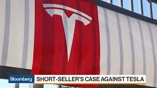 Download Short-Seller Quadir Makes the Bear Case for Tesla Video