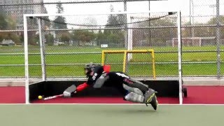 Download Goalkeeper Training with David Carter Video