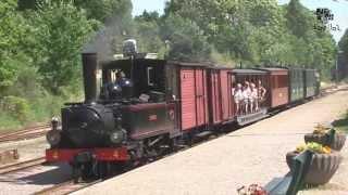 Download (Ö.Sl.J.) 600 mm steame locomotive railway in Sweden HD Video