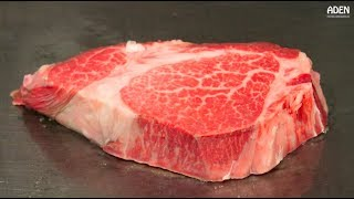 Download Rare Motobu Wagyu Beef - Teppanyaki in Okinawa, Japan Video