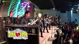 Download El Pega Pega de Emilio Reyna / Presentación en vivo Video