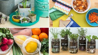 Download 5 DIY Projects That Will Help You Be More Eco-Friendly Video