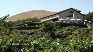 Download Discover Sonoma Wineries HD 2012 Video