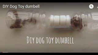 Download DIY Dog Toy dumbell Video