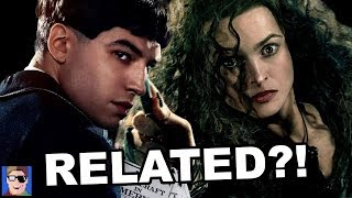 Download Bellatrix & Credence Are Related?!   Fantastic Beasts Theory Video