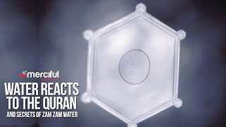 Download Water Reacts to the Quran & Secrets of ZamZam Video