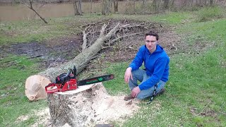 Download THE UNTHINKABLE HAPPENED WHILE CUTTING DOWN A HUGE ASH TREE NEAR A CABIN!! TIMBERPRO TAKES A TUMBLE! Video