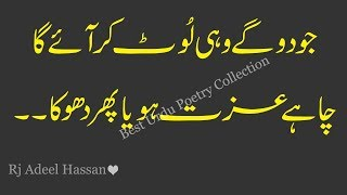 Download Urdu Quotations|life changing motivational quotes|Adeel Hassan Rj|Quotes about life|urdu hindi quote Video