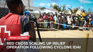 Download Mozambique: Red Cross scaling up relief operation following Cyclone Idai Video