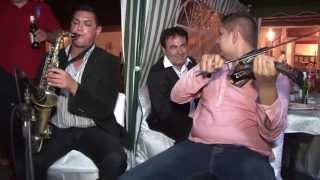 Download Formatia Petrica Vita Nunta Branisca 2013 (3) Video