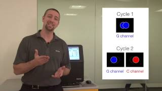 Download How do I optimize amplicon sequencing data? Part 1 | Illumina Video