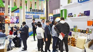 Download Innovators among 200 African companies at CIIE in Shanghai Video