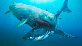 Download 6 Most Dangerous Megalodon Enemies Ever Existed Video