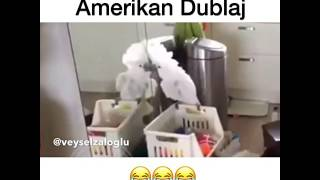 Download İsyankar Papağan - Amerikan Dublaj Video