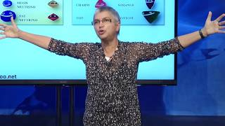 Download Pauline Gagnon Public Lecture: Improbable Feats and Useless Discoveries Video