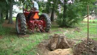 Download Dolphus and the Red Tractor (Ronald Rousting a Stump) Farmall M Delight Video