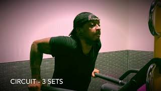 Download No Lunk Alarms🚨| Planet Fitness Circuit Training😓 Video