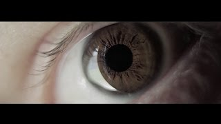 Download Charly Vandedrinck - 2015 Cinematography Reel Video