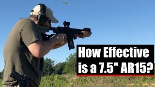 Download How Effective is a 7.5 Inch AR-15? Video