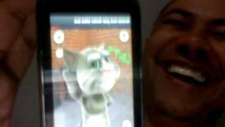 Download Gato que repete o que você fala Video