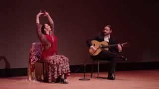 Download Flamenco 101 | Kristofer Hill with Julia Chacon | TEDxLSU Video