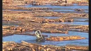 Download 6 minutes pour comprendre la biodiversité Video