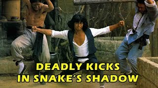 Download Wu Tang Collection - Lee Yi Min in Deady Kicks In Snakes Shadow Video