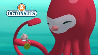 Download Octonauts - Tentacle Terrors! Video