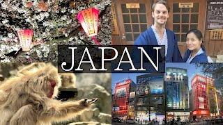 Download 14 Days in Japan Vlog - Tokyo, Hakone, Mount Fuji, Shibu Onsen, Snow Monkey, Disney Video