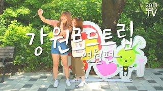 Download 강원로드트립 - 영월편 Video