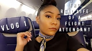 Download The ″Real Life″ of a Flight Attendant | Vlog 1 | Flight home CANCELLED! Video