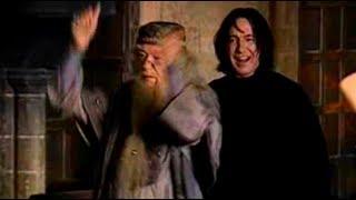 Download Harry Potter - Pařba v Bradavicích (CZ Dabing) Video