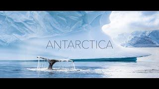Download Antarctica Video