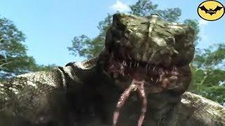 Download Top 5 Prehistoric Predators that would make dinosaurs run. Video
