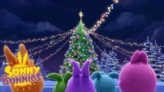 Download Cartoons For Children | SUNNY BUNNIES - LETS GET THOSE PRESENTS | New Episode | Season 3 Video