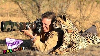Download Top 10 Best & Most Professional Wildlife Photographers In World Video