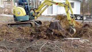 Download Removing Stump with Small Excavator Video
