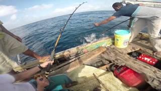Download Fishing in Lamu. Video