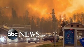 Download Fire Ravages City of Fort McMurray, Alberta Video