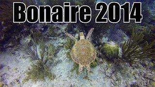 Download Bonaire Dive Trip, May 2014 Video