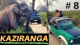 Download Kaziranga National Park Jungle safari   Cultural programme at Orchid, Episode 8 Video