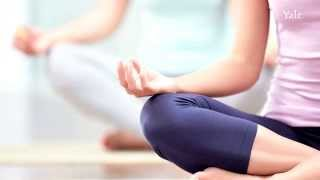 Download Your brain on meditation: Practice makes perfect Video