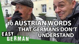 Download 10 Austrian Words that Germans don't understand | Easy German 222 Video