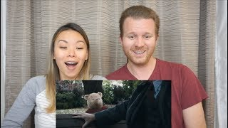 Download Christopher Robin Official Teaser Trailer // Reaction and Review Video