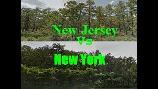 Download Long Island needs Controlled Fires to Protect our Pines! Video