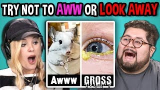 Download College Kids React to TRY NOT TO LOOK AWAY or AWW MEGA CHALLENGE Video