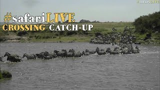 Download safariLIVE: Migration crossing catch-up July 19 2017 Video