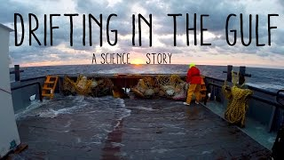 Download Drifting in the Gulf - A Science Story Video