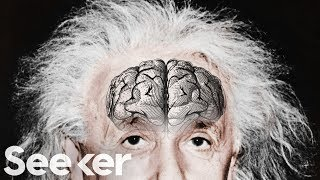 Download Einstein's Brain Was Stolen and Chopped Up Into Tiny Pieces...For Science?! Video